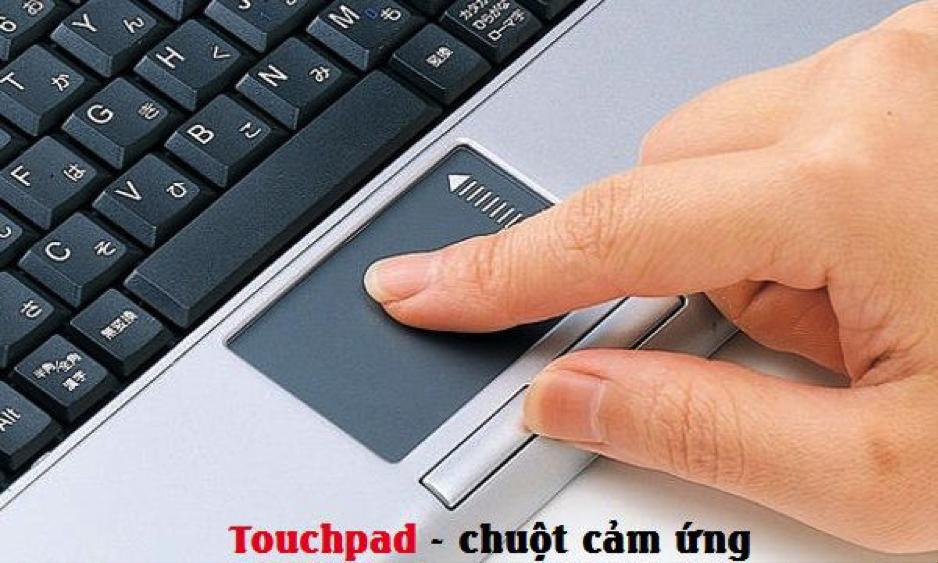 Phải làm gì khi không thấy chuột trên màn hình laptop